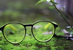 Glasses in nature