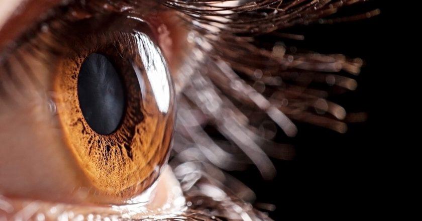 cornea nerve damage long covid